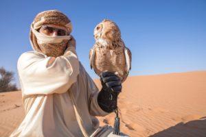 Dubai med fugl
